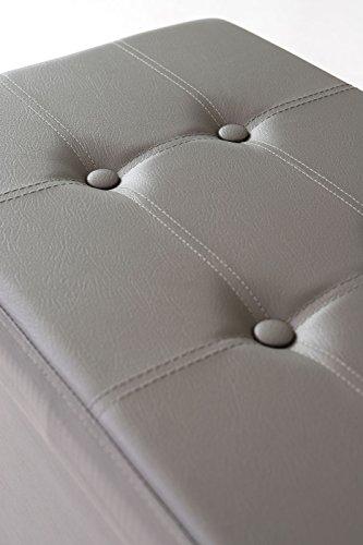 dibea SO00461, Tabouret pliable, simili cuir, 80 L, 76x38x38 cm, Banc pouf Coffre de Rangement, charge max. 300 kg, gris