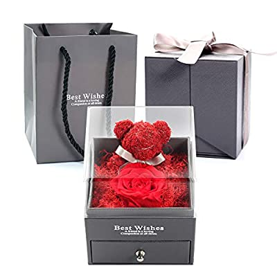 JIAREN Everlasting Handmade Rose with Beautiful Creative Teddy Bear Design Gift for Valentine's Day Mother's Day Christmas Anniversary Birthday Thanksgiving Girl(Send Boutique Brooch) (red)