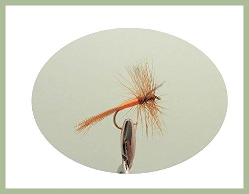 12Pack von trockener Sherry Spinner Angeln Fliegen. Verschiedene Größen 12, 14, 16