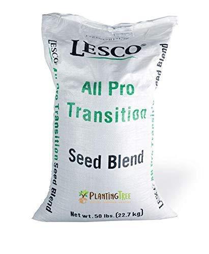 Lesco Transition Pro Grass Seed (50 lb.)
