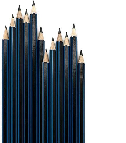 Emraw Pre Sharpened Drawing Sketching B Pencil Set (HB, 2B, 4B, 6B, 7B, 8B), Pack of 12 Premium Wood Cased Graphite Art Pencils for Beginners & Professional Artists, Adults & Kids