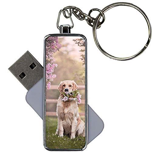 Imprimir con Golden Retriever 6 Compatible con 8Gb USB Flash Metal Chicos Raro