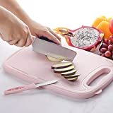 WEIEN Cutting Boards for Kitchen -9 In1 Multifunctional Plastic Cutting Board with Mandoline...