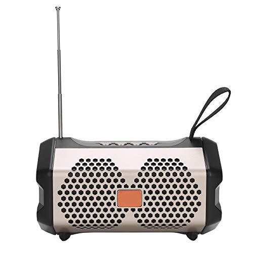 Lazimin Barra de Sonido de Escritorio Bluetooth para el hogar, Altavoz portátil Bluetooth Sistema de Sonido inalámbrico Estéreo bajo Altavoz de Audio para Exteriores Soporte FM