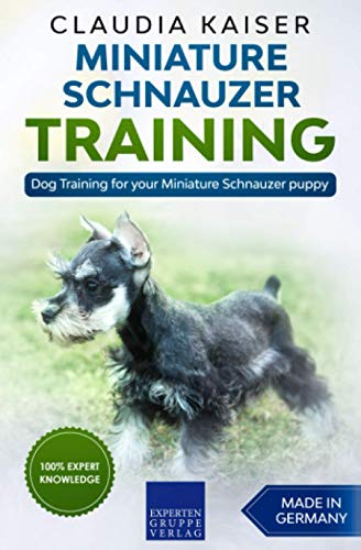 Miniature Schnauzer Training: Dog Training for your Miniature Schnauzer puppy