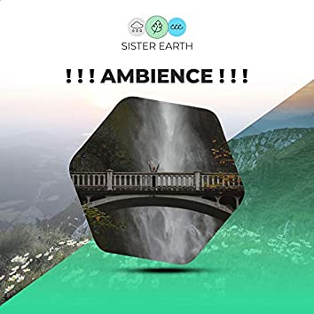 ! ! ! Ambience ! ! !