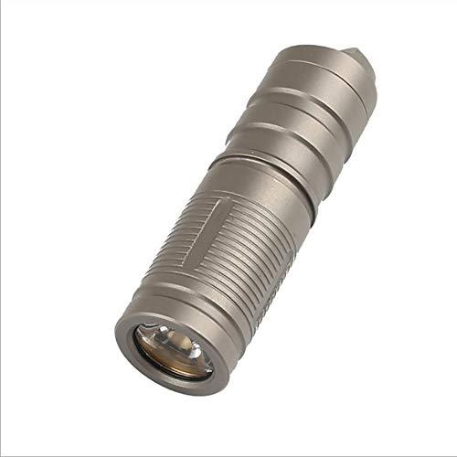 Torches de LED Portable Keychain Lampe de Poche 130 Lumens étanche IPX8 Petite Lumière Rechargeable de Porte-clés pour Extérieur et à la Maison avec Boîtier de Batterie