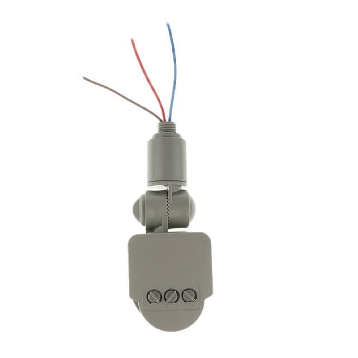 眉をひそめる摂氏待ってHomefunny 12M PIR 赤外線 モーション センサー 検出器 壁 LED RF DC12V グレー ライト アウトドア