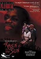 Raisin in the Sun [DVD]