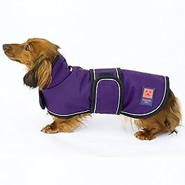 Ginger Ted Shower Waterproof Dachshund Dog Coat
