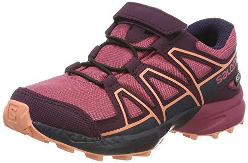 avis chaussure trail salomon speedcross 3 falsas