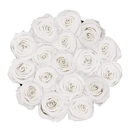 XValentine Petite White Box & Eternity Roses | Real Roses That Last A Year | Eternal Roses | Best Gifts for Her Anniversary | Preserved Roses That Last Forever | Eternity Roses Box (White) Silk Flower Arrangements