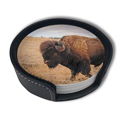 BJAMAJ Black Hills & Badlands Bisonte Premium Pu Leather Coasters, Beber Round Coasters con juegos de soporte, apto para el hogar y la cocina (6 piezas)
