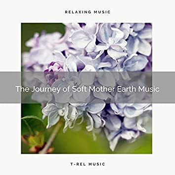 ! ! ! ! ! The Journey of Soft Mother Earth Music