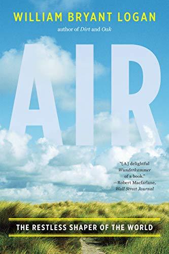 Best air pollution essay