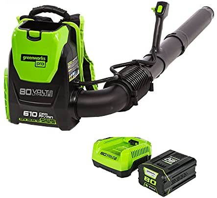 Top 10 Best electric blower Reviews