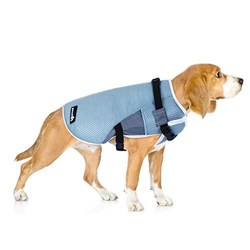 Pecute Chaleco refrigerante para Perros Chaleco de Enfriamiento para Perros y Gatos de Verano Cómodo Transpirable para Mascotas Pequeños, Medianos y Grandes, Apto para Interior y Exterior (L, Azul)