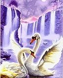 WYLUWLI Swan Animal DIY pintura digital pared arte pintura acrílico lienzo para boda decoración sin marco 40x50 cm