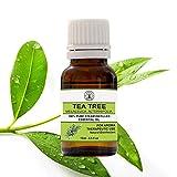 Earth Treasure Tea Tree Essential Oil for Aromatherapy/Diffuser - Tea Tree Essential Oil for Healthy...