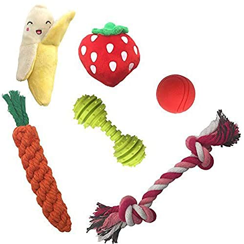 SCENEREAL Best Small Dog Chew Toys – Cute Durable Stuffed Plush Rope Puppy Toys for Tiny Dogs Cats 6 Pcs