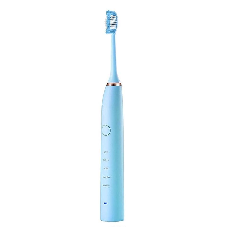 基本的なかすかなうんざり電動歯ブラシソニック歯ブラシ31,000ストローク/分防水完全洗える歯ブラシ5ブラッシングモード2交換ヘッド(色:B)