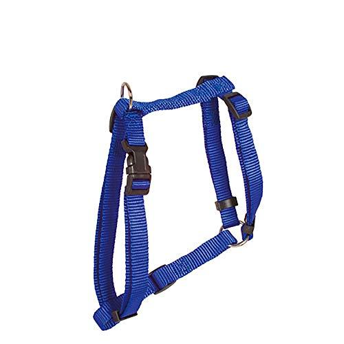 Harnais Nylon Essentiel Bleu 25mm x 54