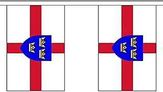 Flag Co 9 Metres 30 (9