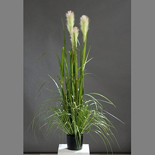 mucplants Künstliches Riedgras Grasarrangement 120cm im schwarzen Topf Ziergras Kunstgras Schilfgras
