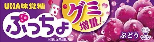 UHA味覚糖 ぷっちょ ぶどう スティック ×10個