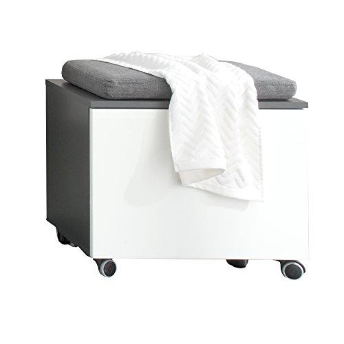 trendteam smart living Badezimmer Sitzcontainer Beach, 55 x 47 x 34 cm in Korpus Grau Melamin, Front Weiß Hochglanz auf Rollen