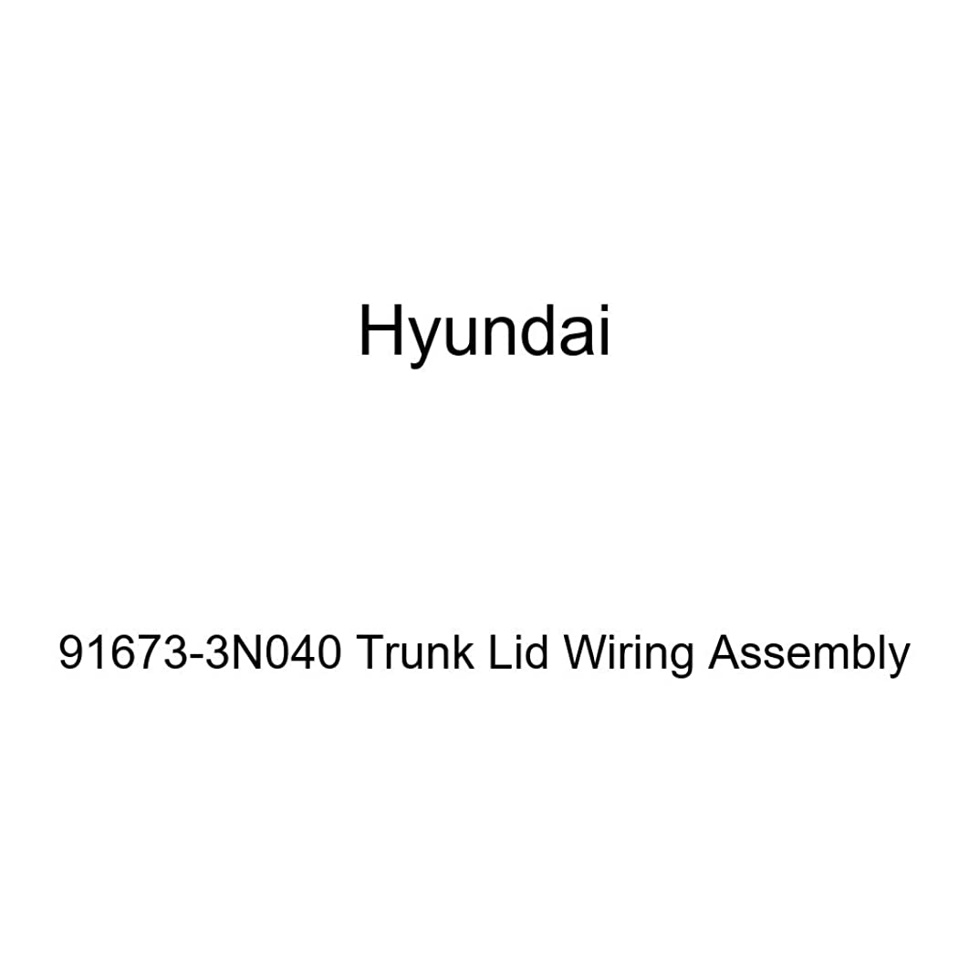 Genuine Hyundai 91673-3N040 Trunk Lid Wiring Assembly