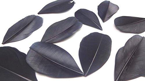 HARU雑貨 フェザー 羽根 ガチョウ ブラック 黒 10枚セット 染め 装飾 素材 手芸 ピアス ネックレス コサージュ