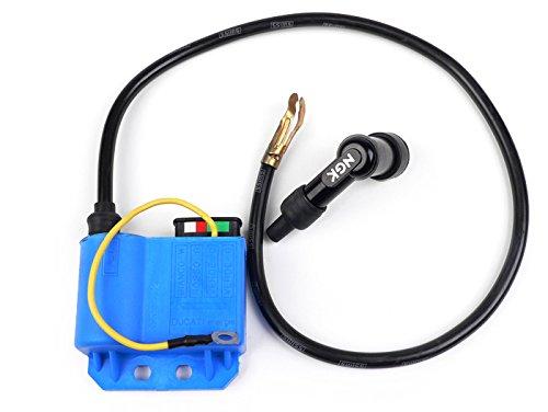 CDI Zündspule ORIGINAL PIAGGIO mit Kabel + Stecker Vespa PX PK XL ET3 Cosa APE