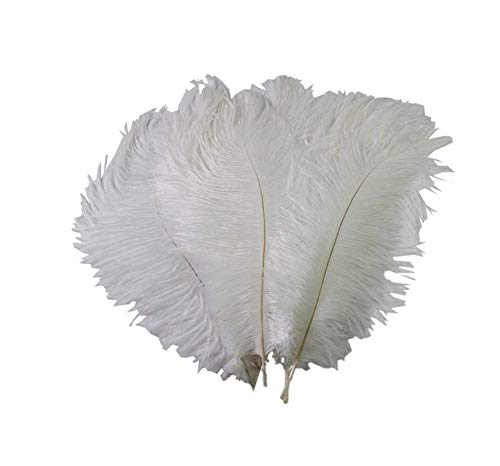 VASANA 50 plumas de avestruz de 15 a 20 cm, color blanco natural, para decoración del hogar, manualidades, etc.
