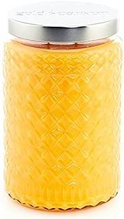 Gold Canyon Candle Mango Cooler Large Scented Jar Candle