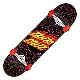 Santa Cruz Flame Dot 8.0' compleet Skateboard