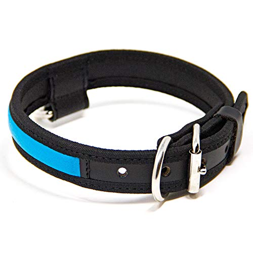 Logical Leather Premium Leather Dog Collar - Best Full Grain Heavy Duty Genuine Leather Collar (Cyan, Medium)