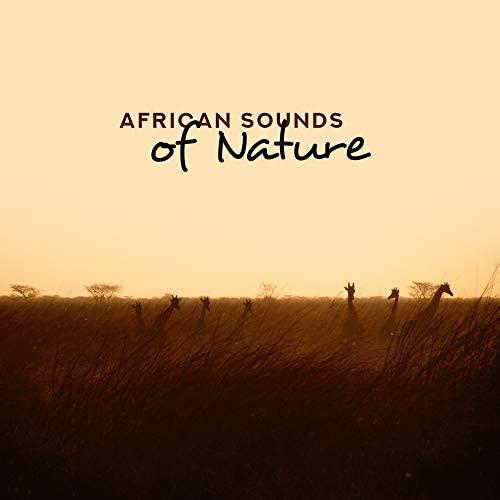 Sounds of Nature, Serenity Nature Sounds Academy, Close to Nature Music Ensemble