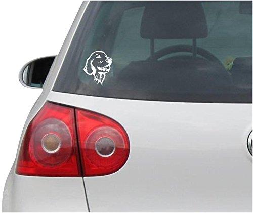 INDIGOS UG Aufkleber - Autoaufkleber - JDM - Die Cut - Golden Retriever Sticker Car Fenster Laptop Sticker - weiß - 88mmx109mm