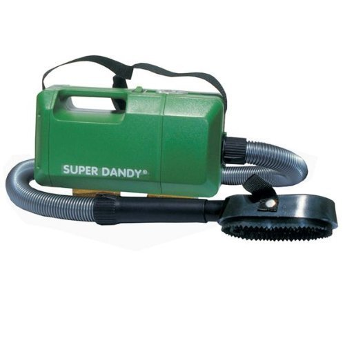 SUPER DANDY Boy,
