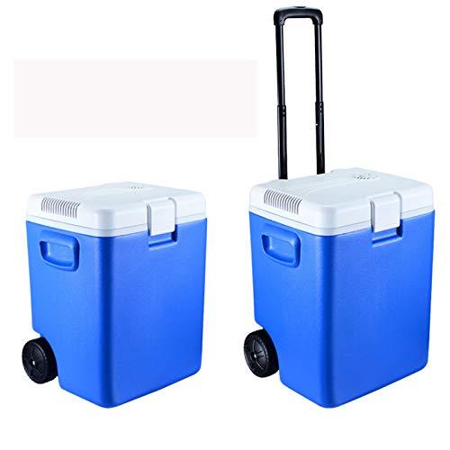 YICHEN Mini refrigerador de 30 litros de Alta Capacidad. Mini Nevera con Ruedas para Alimentos, Bebidas, Cuidado de la Piel en casa, Oficina, Dormitorio, automóvil