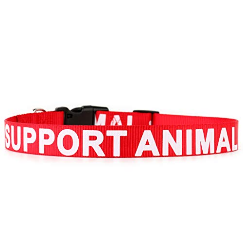 PLUTUS PET Support Animal Collar,Printed in Large Letters on Nylon Webbing,Prevents Accidents by Warning Others of Your Dog in Advance,Two Colors,Four Sizes,Neck 16-24 inch,Large,Red