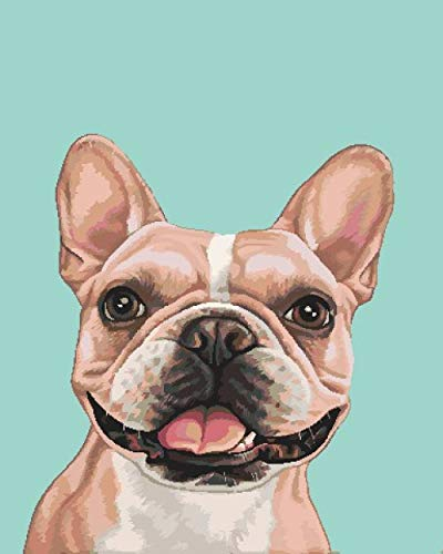 ZLLHAPPY Paint by Numbers Kits for Adults French Bulldog Paint by Numbers for Adults ,DIY Digital Painting by Numbers Kits On Canvas with Brushes and Acrylic Pigment