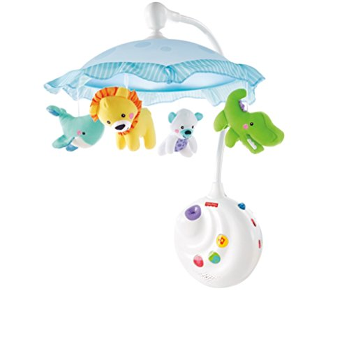 Fisher-Price Precious Planet 2-in-1m