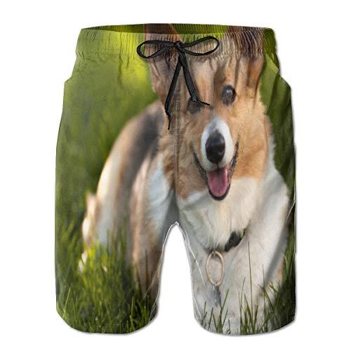 90ioup Welsh Corgi Dog - Pantalones cortos de natación para hombre Blanco blanco XL
