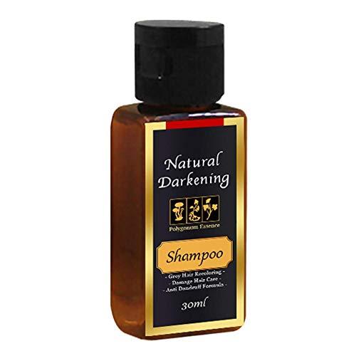 Champu Natural, Ingredientes Naturales,Champú Oscurecedor Cabello Natural Permanente Jengibre