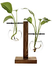 belupai Floreros hidropónicos vintage florero transparente marco de madera de vidrio, plantas de mesa, bonsái, decoración del hogar (B – jarrón de 2 bombillas)
