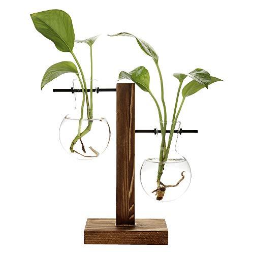 belupai Hydrokultur-Pflanzvase, Retro-Blumentopf, transparente Vase mit Holzrahmen, Tischpflanzglas für Zuhause, Bonsai, Deko, B-Vase mit 2 Lampen, 11.5 x 19.5cm