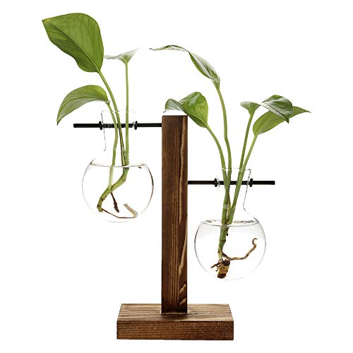 Takefuns Glazen Testbuis Houder in Houten Stand, Hydroponische Vaas, Indoor Desktop Plant Terrarium, Vintage Bonsai Planter Lamp voor Thuis, Kantoor