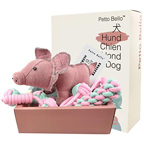Petto Bello Geschenkbox mit 5-teiligem Set aus Hundespielzeug, Kauspielzeug für Hunde-Zahnpflege und...